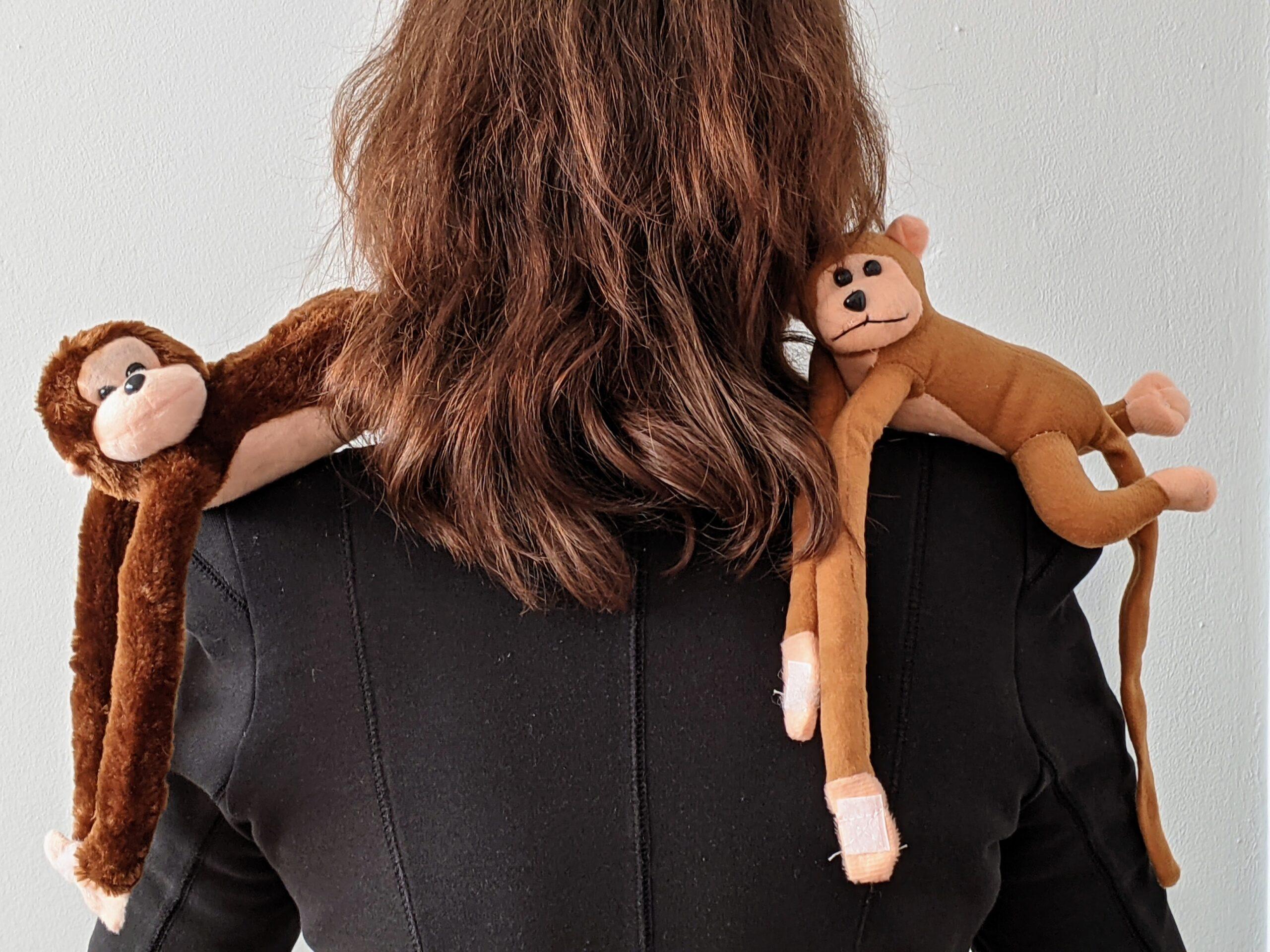 ACTIE met 2 aapjes