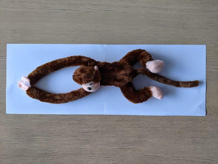 Pluche aap bruin uitgerekt